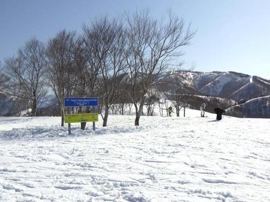 コースが豊富です。|石打丸山スキー場のクチコミ画像