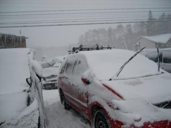 大雪でした。|白馬岩岳スノーフィールドのクチコミ画像