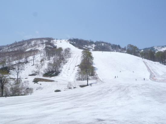 5/22 クローズ4日前のコンディション|かぐらスキー場のクチコミ画像