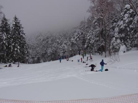 今日はガスの中|信州松本 野麦峠スキー場のクチコミ画像