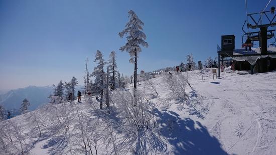 晴天|かぐらスキー場のクチコミ画像