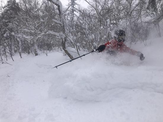 サイドカントリーが楽しめます。|富良野スキー場のクチコミ画像