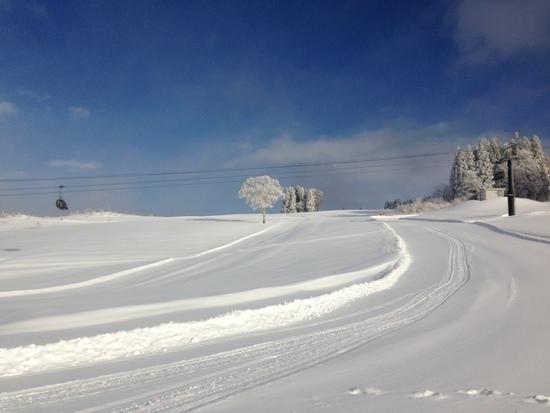 超絶パウダー|野沢温泉スキー場のクチコミ画像