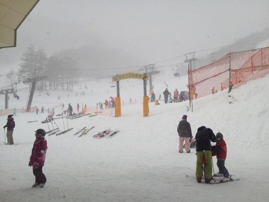 パウダースノー、でも寒かった!|オグナほたかスキー場のクチコミ画像