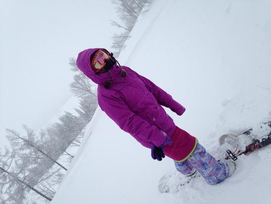 新雪|ニュー・グリーンピア津南スキー場のクチコミ画像2