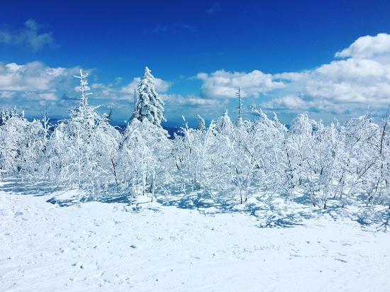最高過ぎる絶景!!|パルコールつま恋スキーリゾートのクチコミ画像3