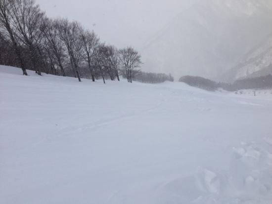 粉雪|ホワイトバレースキー場のクチコミ画像
