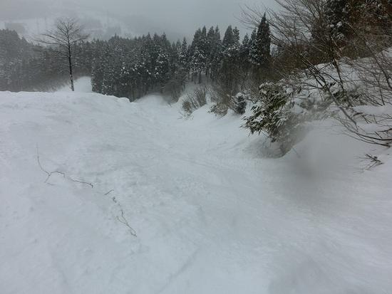 パウダーがあり、地形遊びもできて楽しかった!|立山山麓スキー場のクチコミ画像