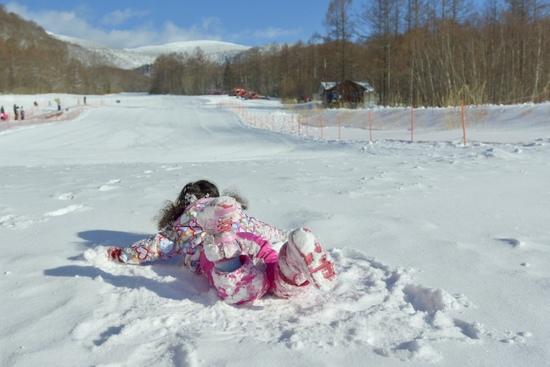 小さな子どもも楽しめる|グランデコスノーリゾートのクチコミ画像2