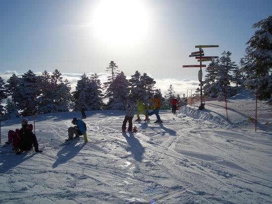 スーパーいい天気!自然の恵みを頂きました。|かぐらスキー場のクチコミ画像