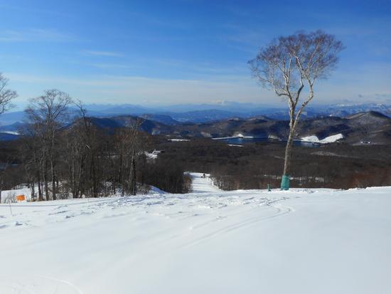 平日指定券2525円・晴れのち雪|たんばらスキーパークのクチコミ画像