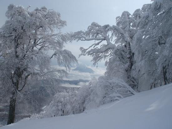 中級者以上には楽しい雪のいいゲレンデ|斑尾高原スキー場のクチコミ画像