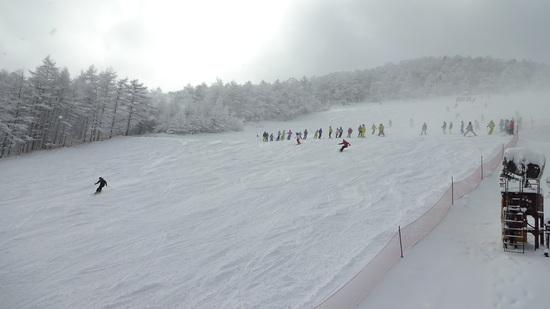 初滑りです。