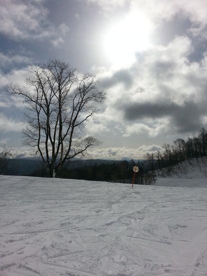好きです(*´∀`)|めいほうスキー場のクチコミ画像