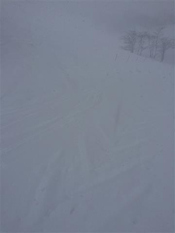 パイオニアコース!|北信州 木島平スキー場のクチコミ画像