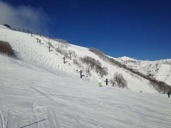 四方八方|白馬八方尾根スキー場のクチコミ画像