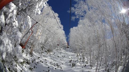 樹氷のトンネル|YAMABOKU ワイルドスノーパークのクチコミ画像
