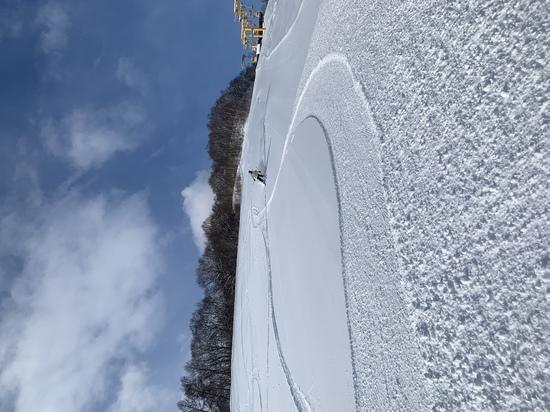 最高だべ、バフバフパウダー|朝里川温泉スキー場のクチコミ画像3