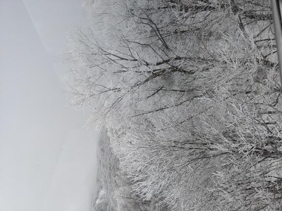 素晴らしい景色!|蔵王温泉スキー場のクチコミ画像