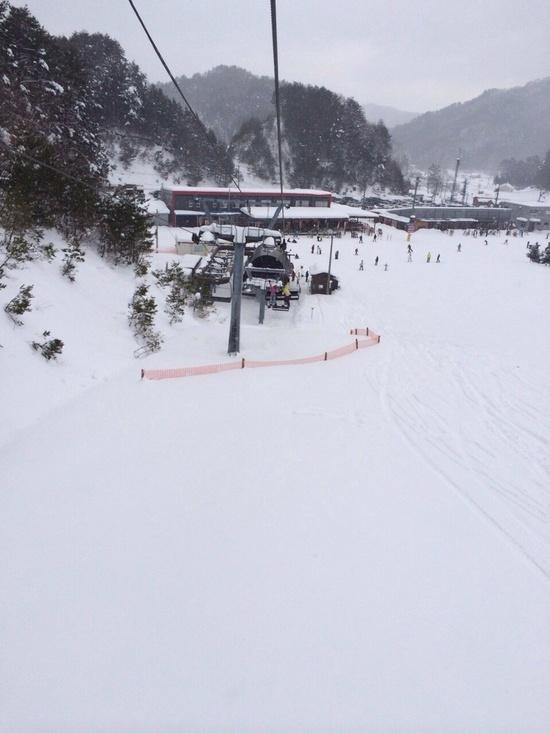 初芸北国際☆|芸北国際スキー場のクチコミ画像