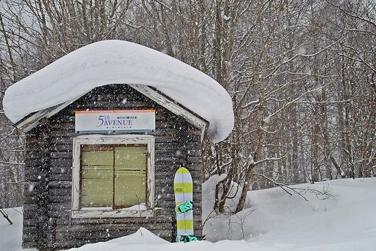 飽きないスキー場。|HAKUBAVALLEY 鹿島槍スキー場のクチコミ画像