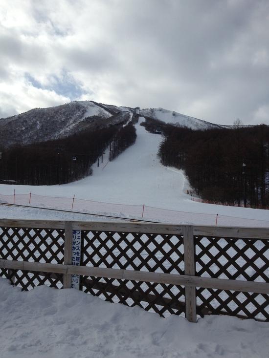 貸切状態パウダー最高!|あだたら高原スキー場のクチコミ画像