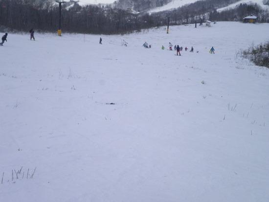 雪は少ない!|白馬岩岳スノーフィールドのクチコミ画像