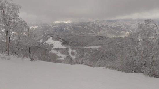 また来たい!期待!|スキージャム勝山のクチコミ画像