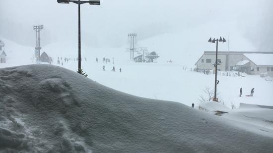 初日|ニュー・グリーンピア津南スキー場のクチコミ画像