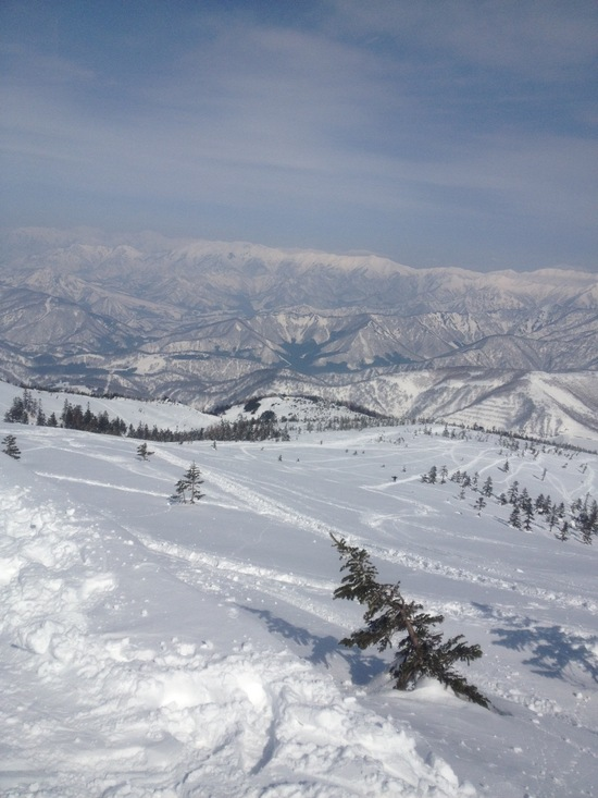 北海道にも負けない、広大な自然と最高の雪質です!|かぐらスキー場のクチコミ画像