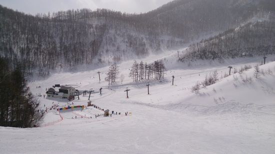 シュールな作品|オグナほたかスキー場のクチコミ画像2