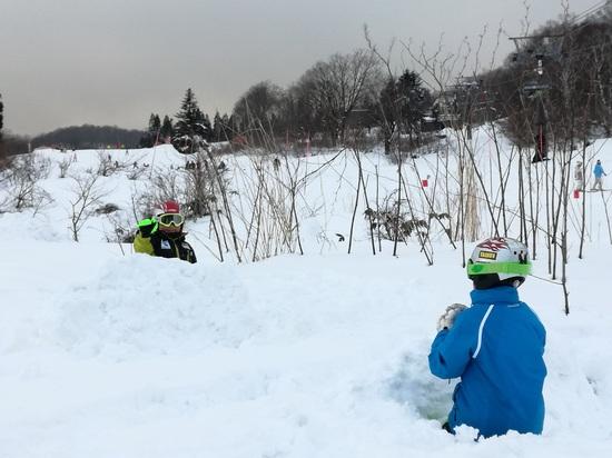 ふかふか雪遊び⛄。|赤倉観光リゾートスキー場のクチコミ画像