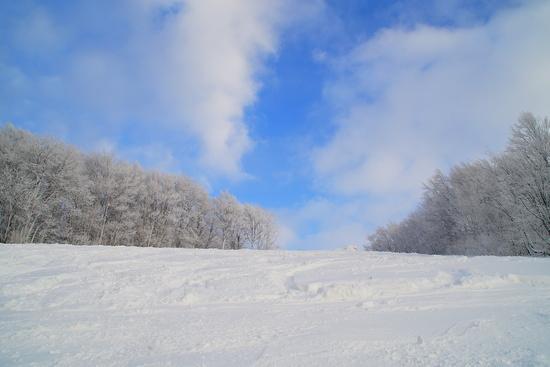 穴場。 八甲田スキー場のクチコミ画像