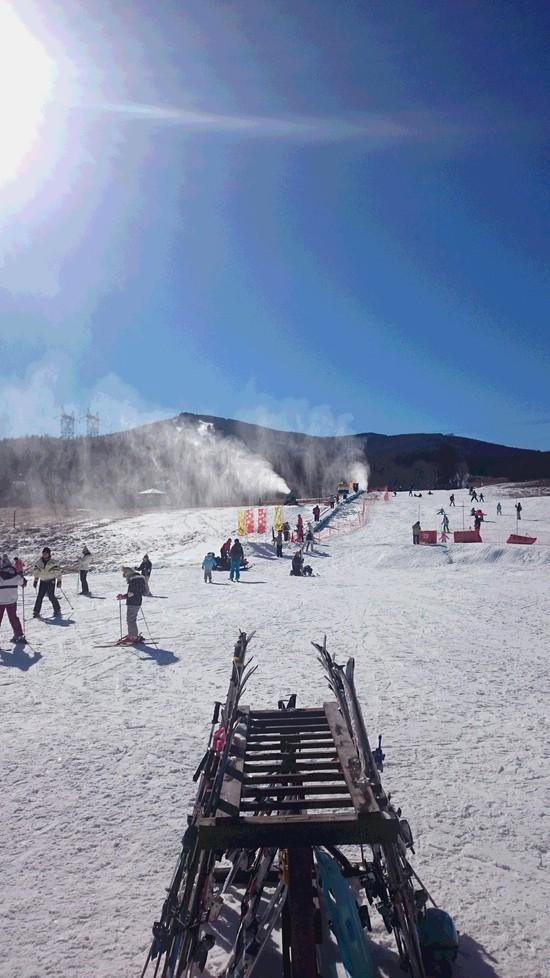 雪がない・・・|ブランシュたかやまスキーリゾートのクチコミ画像