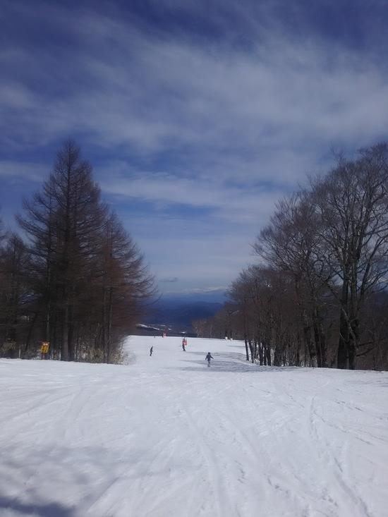 春の陽気|めいほうスキー場のクチコミ画像