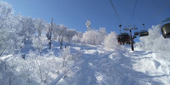 昨夜から50cmの積雪で今日は無風晴天最高|野沢温泉スキー場のクチコミ画像1