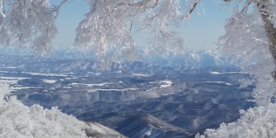 昨夜から50cmの積雪で今日は無風晴天最高|野沢温泉スキー場のクチコミ画像3