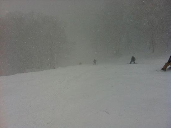 木落としコースは面白い|竜王スキーパークのクチコミ画像3