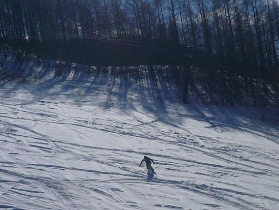 最高の雪|信州松本 野麦峠スキー場のクチコミ画像