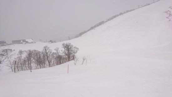 3月終わりに積雪!!|谷川岳天神平スキー場のクチコミ画像