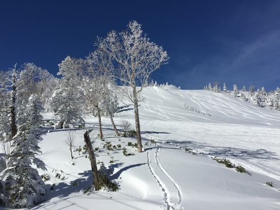 雪が少ない|志賀高原リゾート中央エリア(サンバレー〜一の瀬)のクチコミ画像3