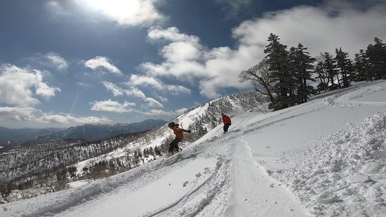 神楽はV|かぐらスキー場のクチコミ画像2