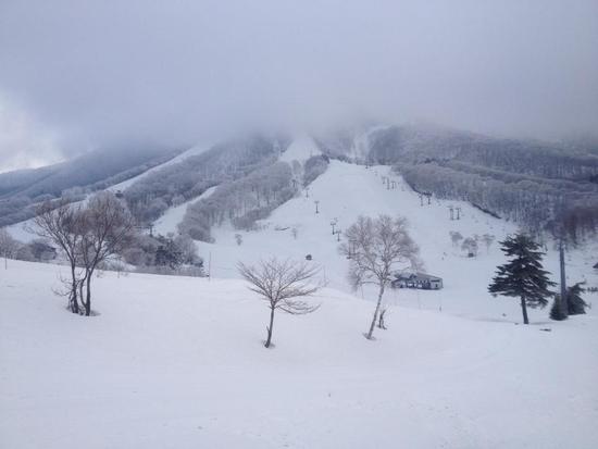 3月だって運がよければパウダー|斑尾高原スキー場のクチコミ画像