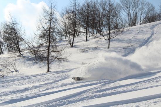 パークとパウダーエリアが面白い 福井和泉スキー場のクチコミ画像1