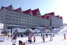 最高のホテル|白馬コルチナスキー場のクチコミ画像