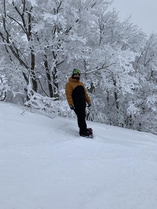 田沢湖を眺めながら たざわ湖スキー場のクチコミ画像3