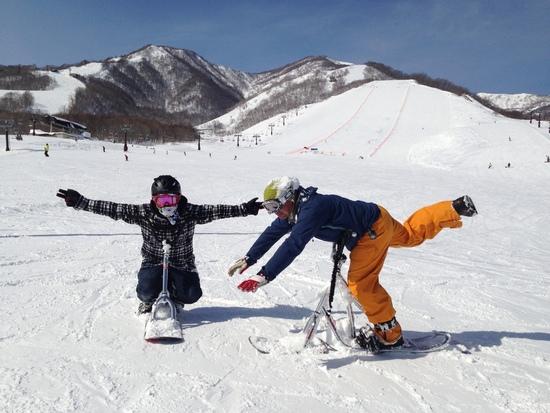 スノースクートデビュー|栂池高原スキー場のクチコミ画像