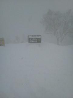 パウダー|野沢温泉スキー場のクチコミ画像