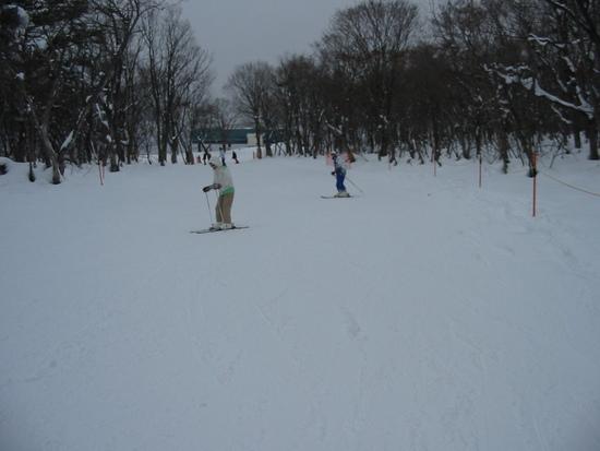 初心者がいる家族向けのスキー場|ひるがの高原スキー場のクチコミ画像