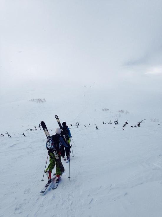 ツガパウ|栂池高原スキー場のクチコミ画像